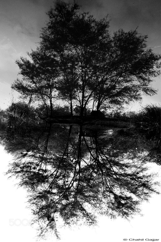 Photograph Reflection by Chahil Gajjar on 500px