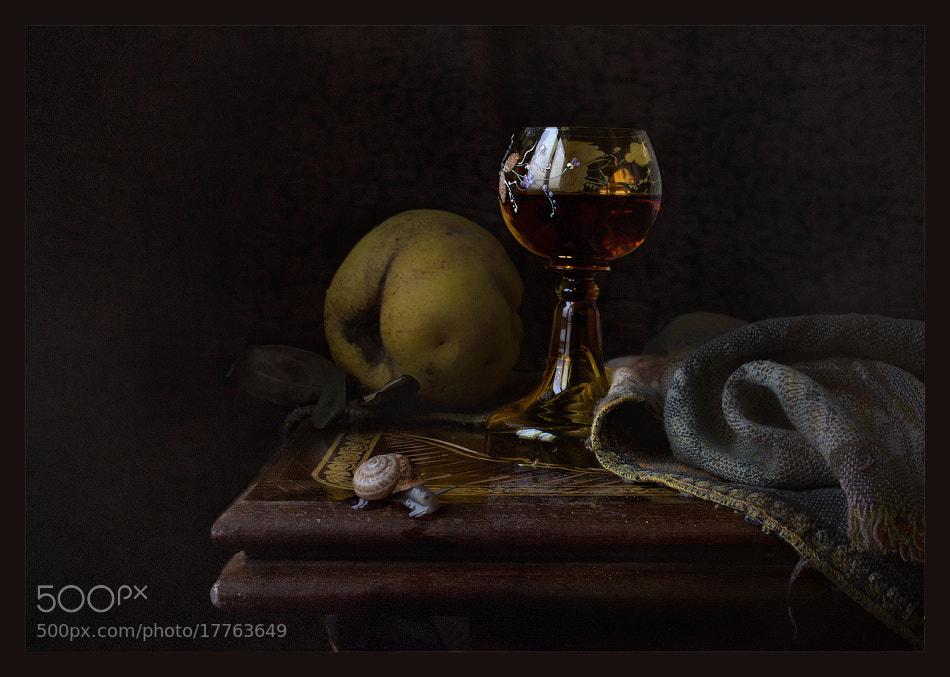 Photograph Leisurely ... by Viktoria Imanova on 500px
