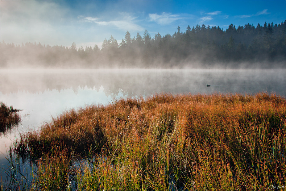 Photograph The Lake, the Fog and the Duck by Jan Geerk on 500px
