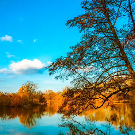 Autumn - Golden Pond, Canon EOS 30D, EF-S17-55mm f/2.8 IS USM