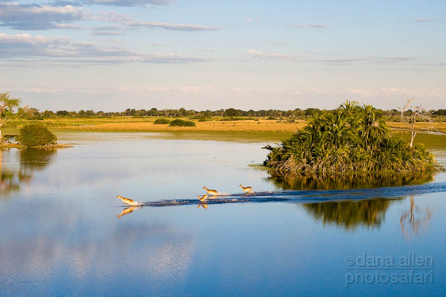 Photograph Reflections in Paradise.  by Dana Allen on 500px