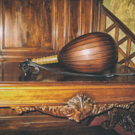 The Warbling Lute, Canon POWERSHOT A2600