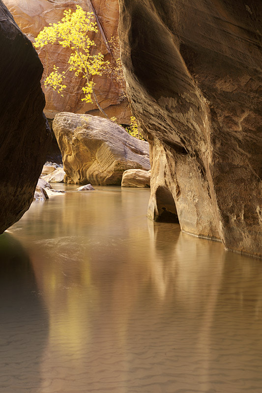 Photograph Deep in The Narrows by Steve Shuey on 500px