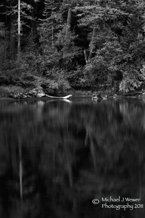 Photograph Evergreen Reflection by Michael Wewer on 500px