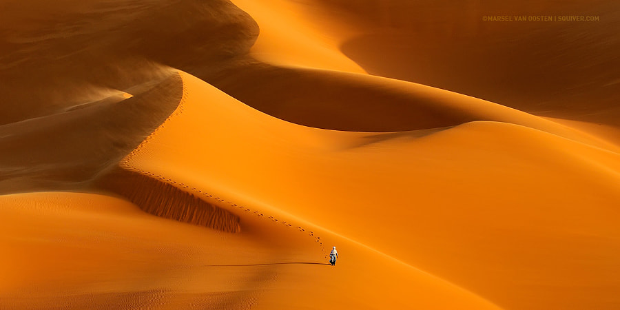 International Pano Awards by Marsel van Oosten on 500px.com