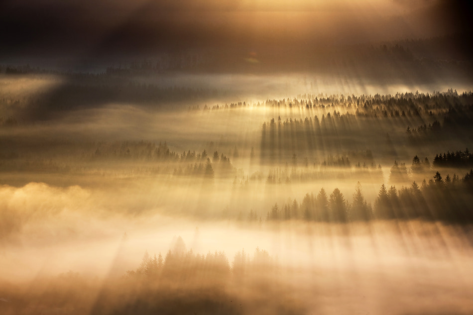 Photograph Explosion by Marcin Sobas on 500px