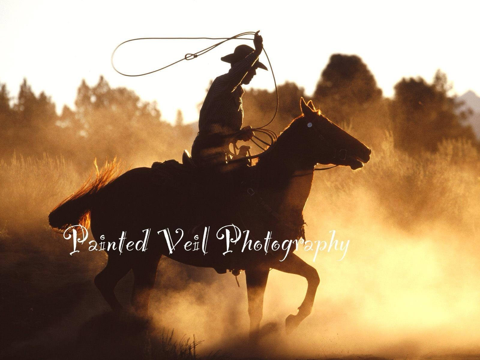 Photograph Cowboy's work is never done by Jennifer  Anne on 500px
