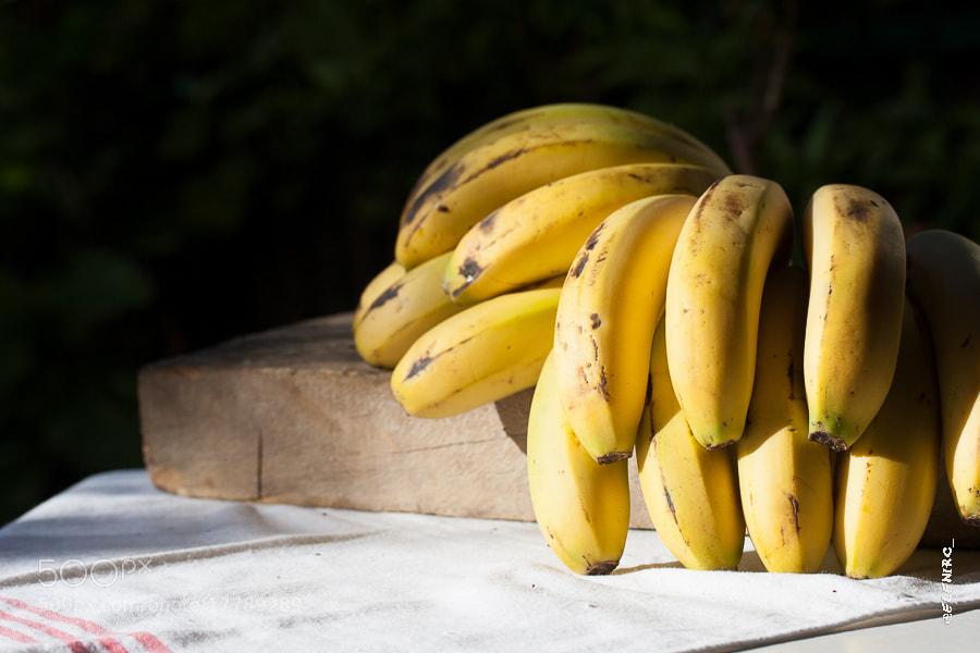 Photograph plátanos by Elena Rubio on 500px