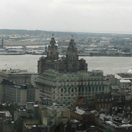Liverpool and the Liver, Samsung Galaxy Mini