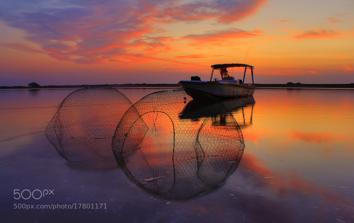 Photograph Sunrise today by Ahmed Sameer  on 500px