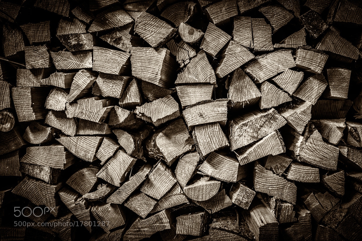 Photograph Pile of Wood by Petri Damstén on 500px