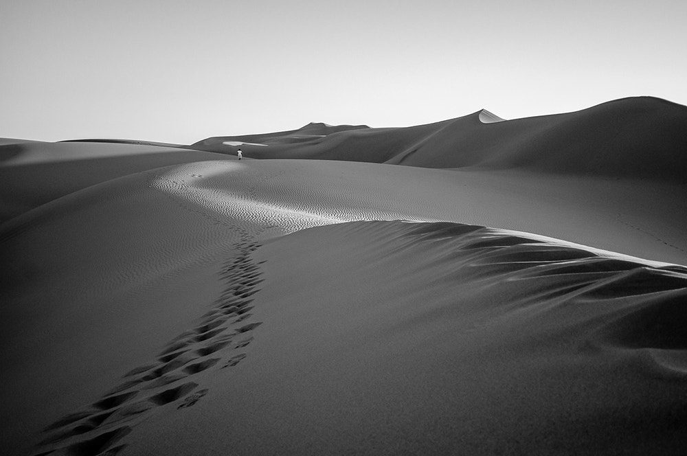 Photograph Into The Desert by Jennifer Magallon on 500px