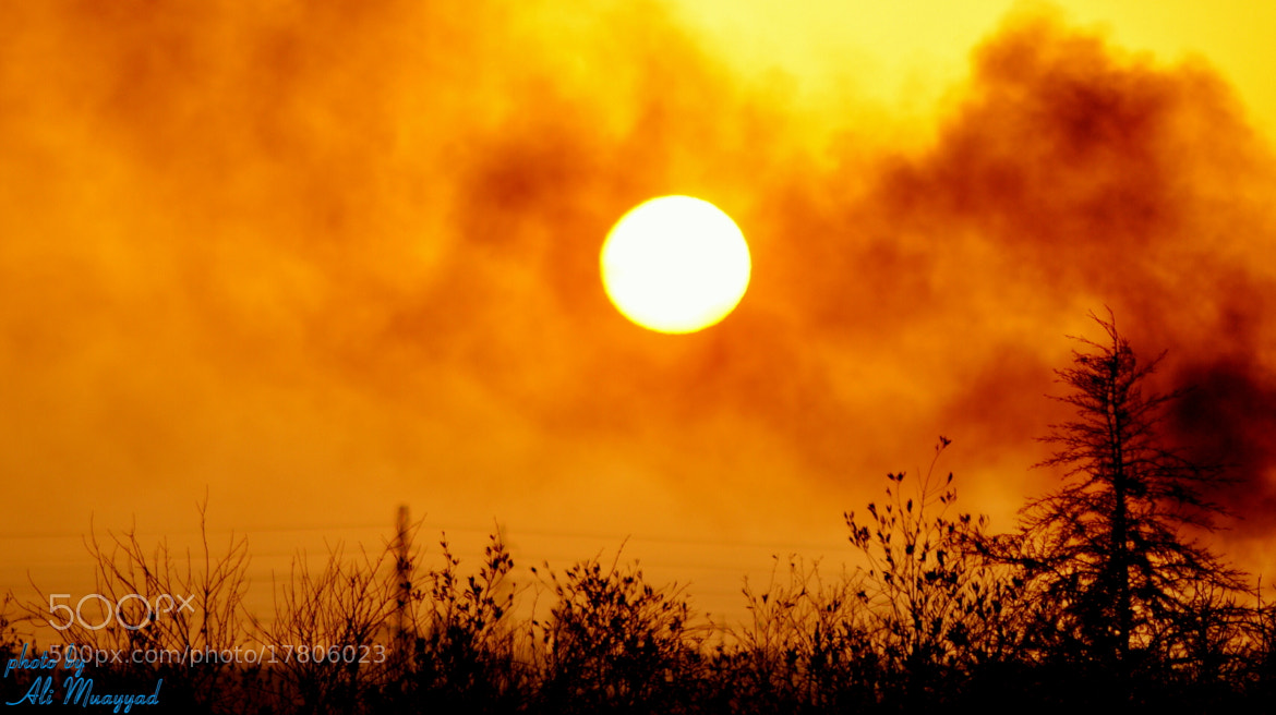 Photograph The power of the sun by Ali  Muayyad on 500px