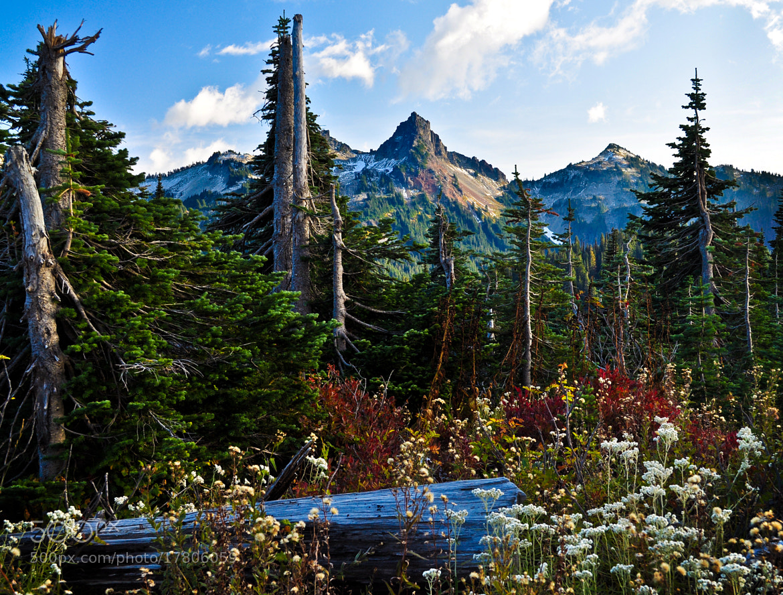 Photograph Tatoosh Range Washington by James Clark on 500px