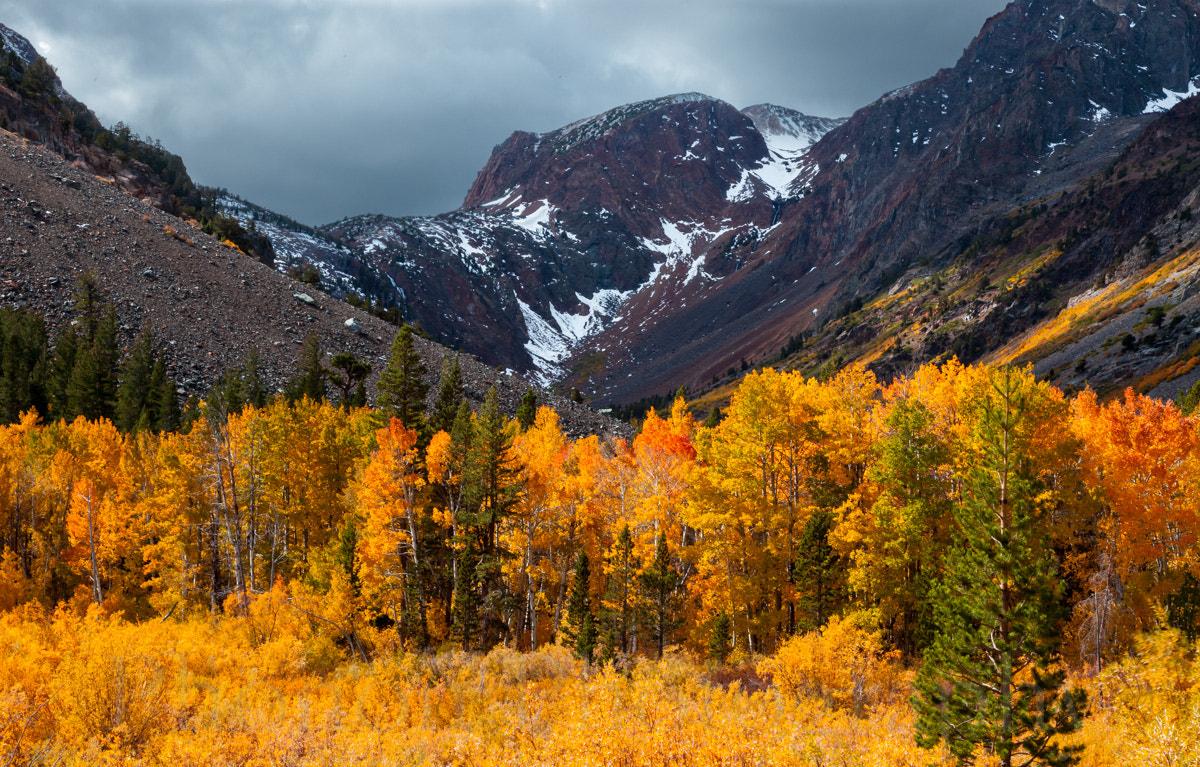 Photograph Lundy Canyon by Joe Dineen on 500px