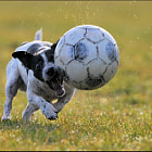 Let´s play soccer!