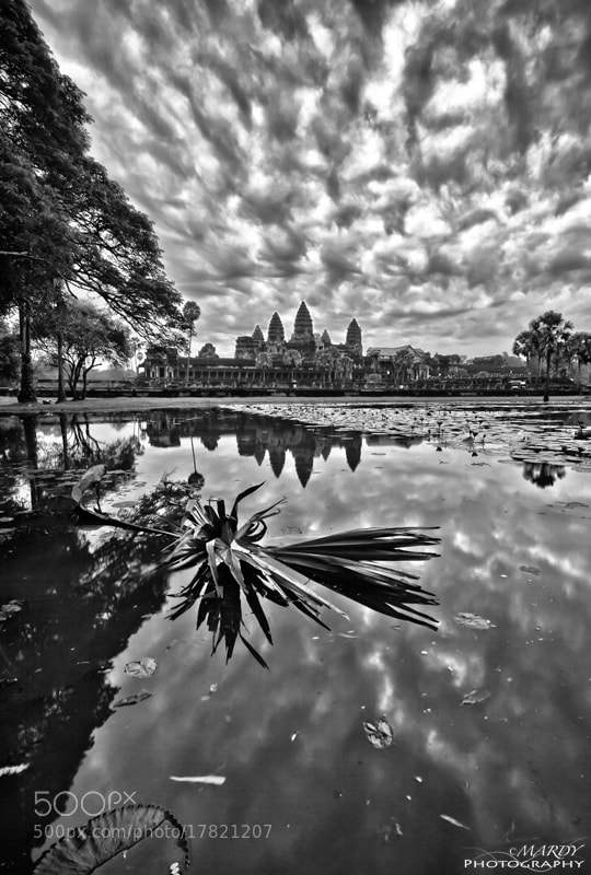 Photograph Powerful of Angkor Wat! by Mardy Photography on 500px