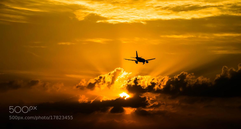 Photograph Golden Sunrise by julian john on 500px