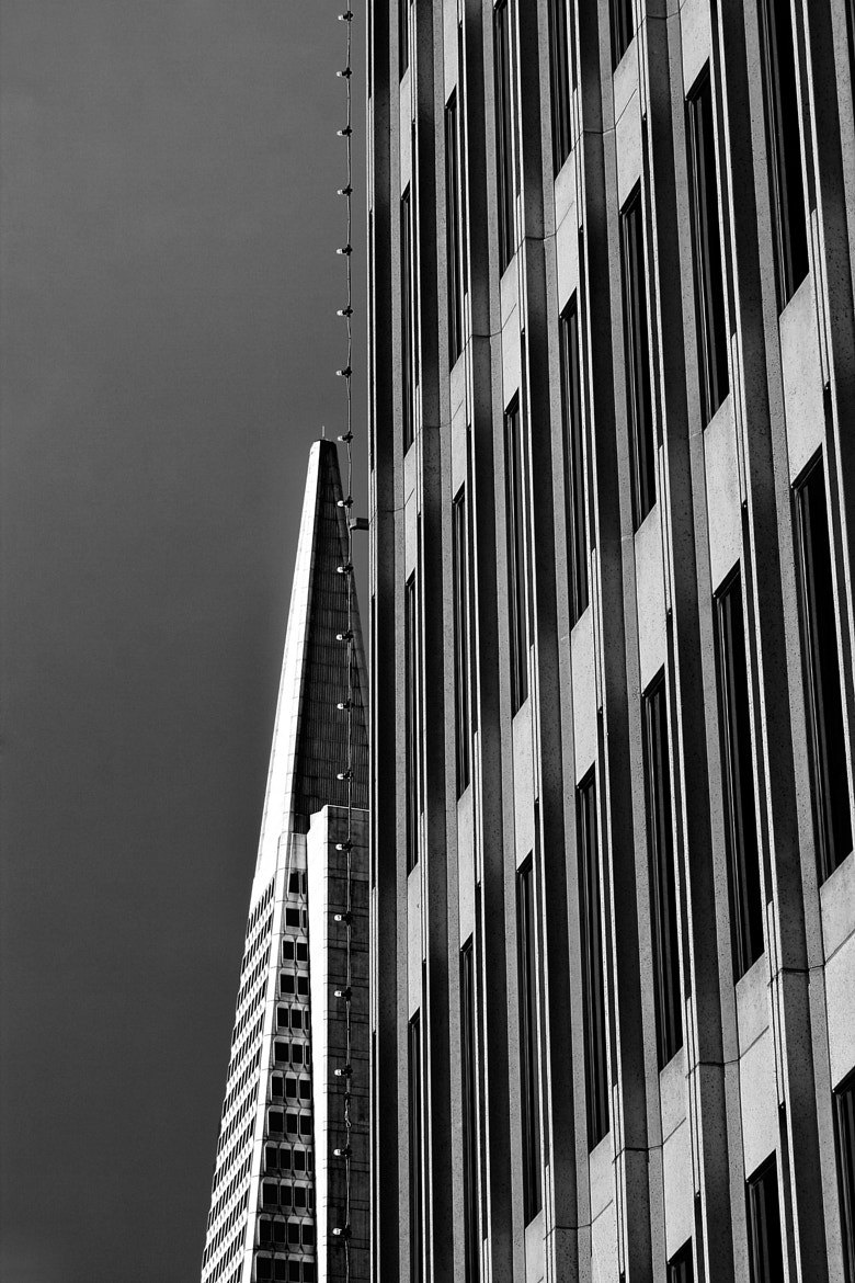 Photograph San Francisco - Buildings by Arnaud  on 500px
