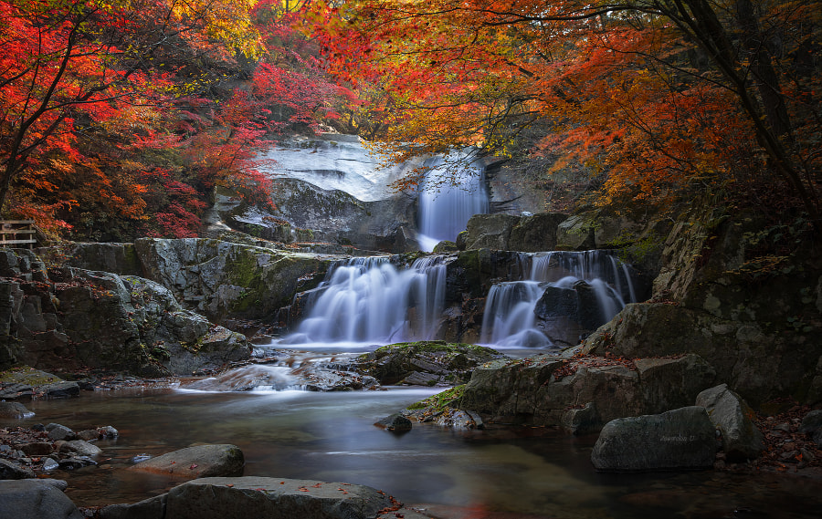 Autumn fall by Jaewoon U on 500px.com