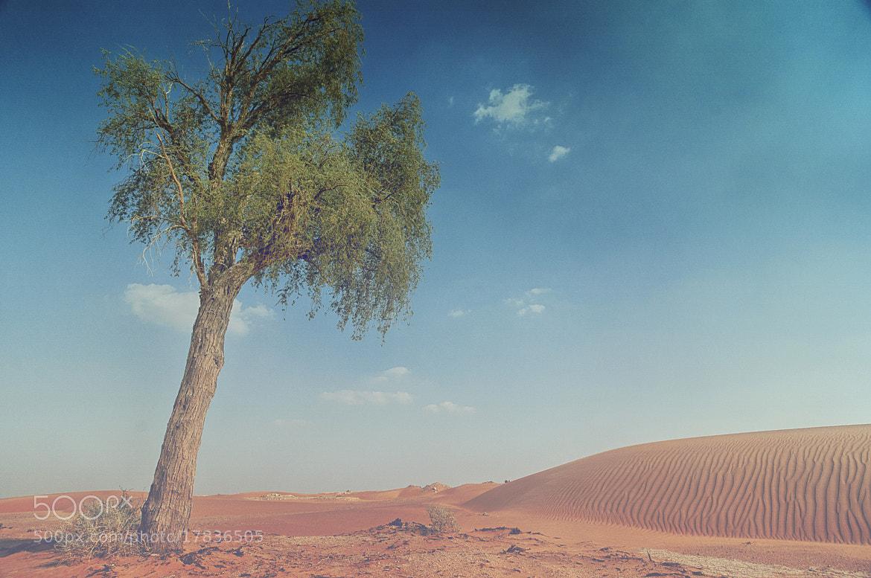 Photograph Lekhwair, Oman by Midhun Mukund on 500px
