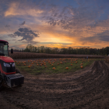 Sunset Tractor, Canon EOS-1D X, Canon EF 15mm f/2.8 Fisheye