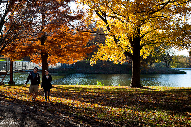 Photograph An autumn date by Tuan Hoang on 500px