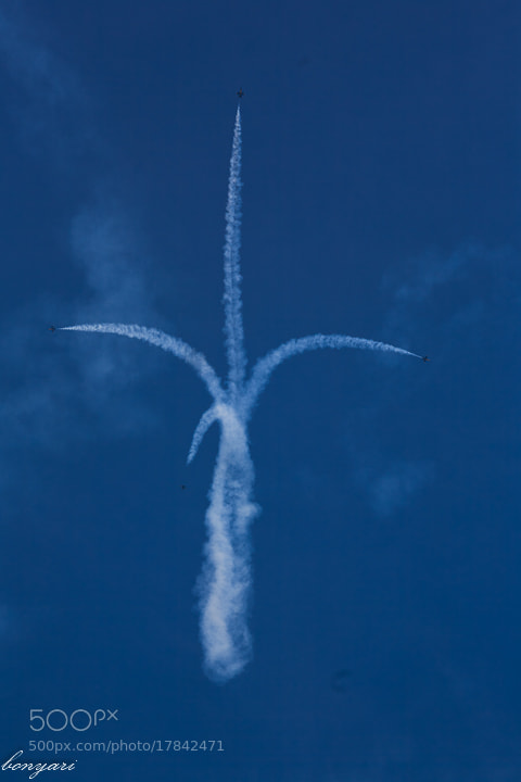 Photograph Chicago Air-Water show 2012 by Tuan Hoang on 500px