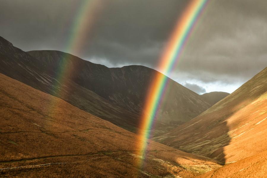 Newlands Rainbow