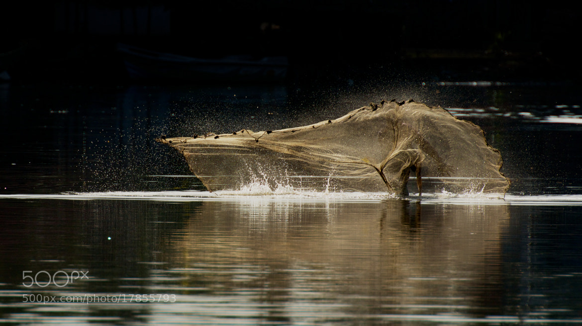 Photograph GoLdeN RusH by ViShWa  on 500px