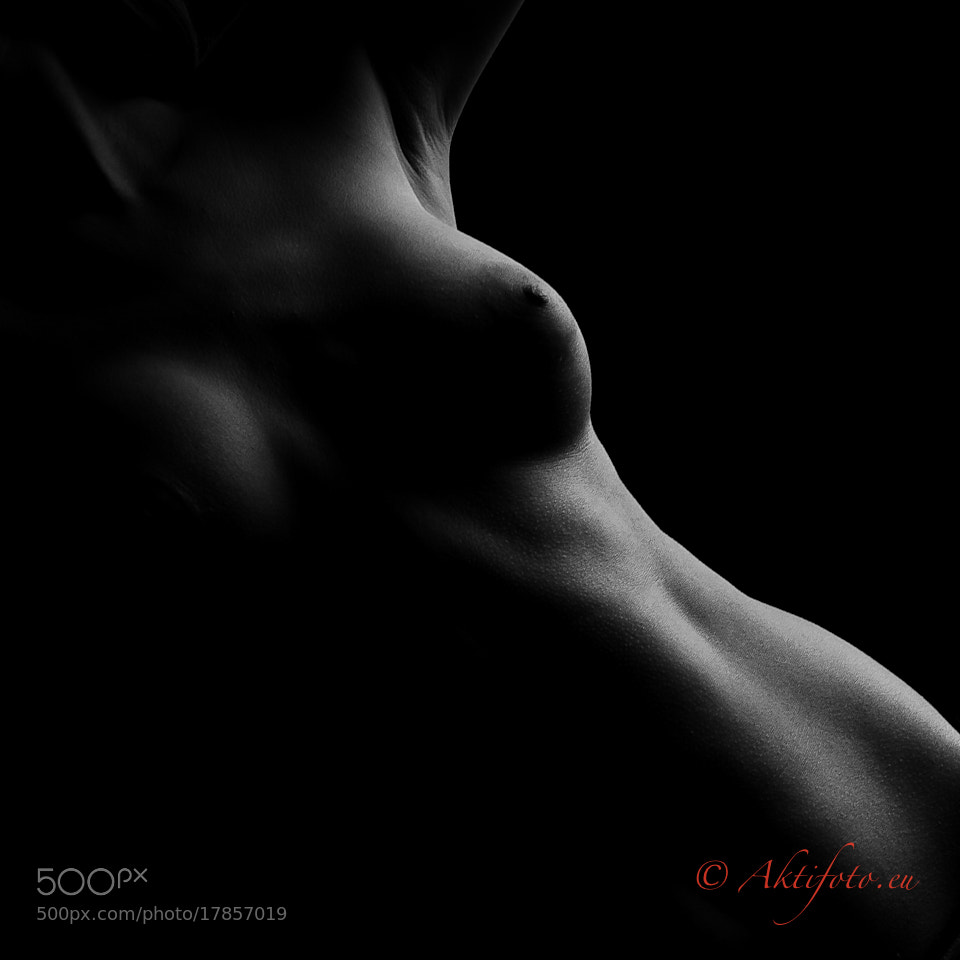 Photograph In the Shadow by Aktifoto  on 500px
