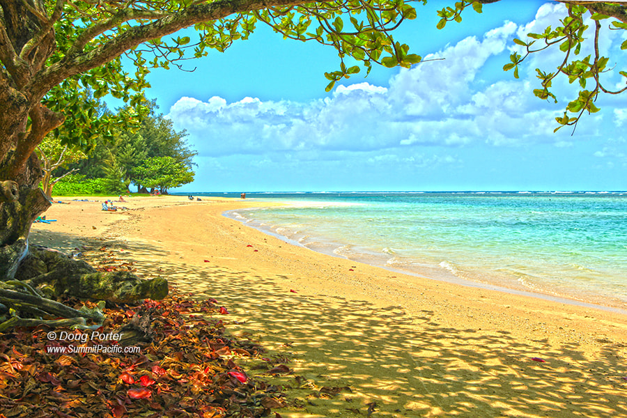 Photograph Anini Beach by Doug Porter on 500px