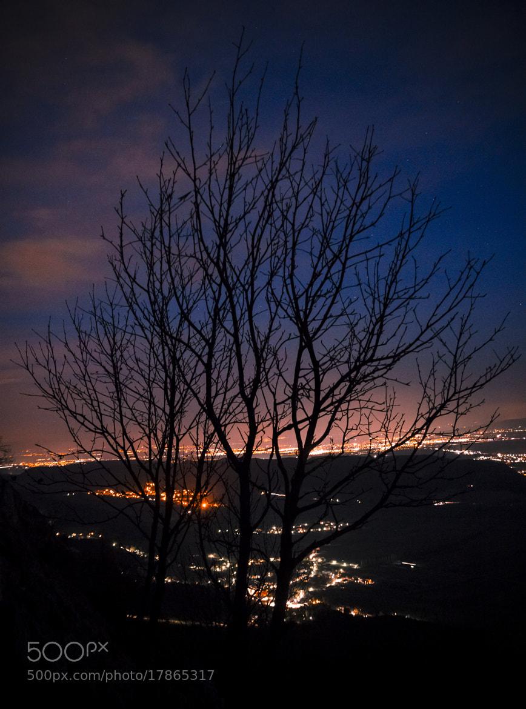 Photograph Skywalk, Hohe Wand by Kreativ Foto Cheesy on 500px
