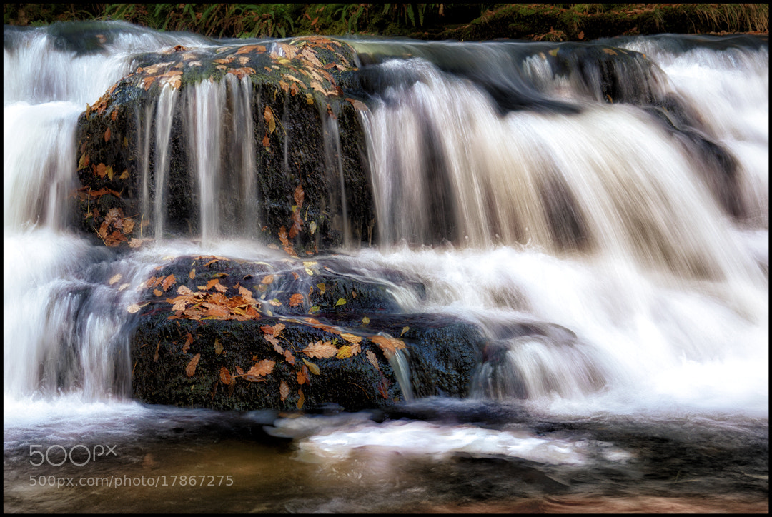 Photograph Autumn Flows by Matthew Jones on 500px