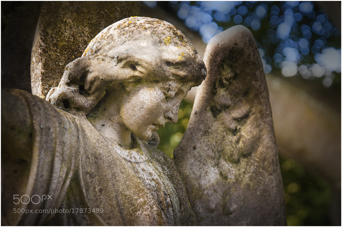 Photograph Victorian Angel by Mark Shoesmith on 500px