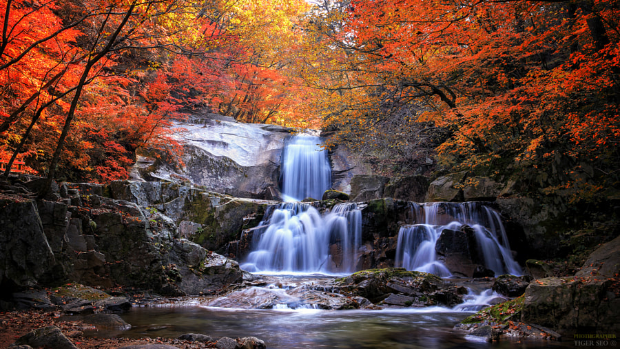 waterfall in autumn by Tiger Seo