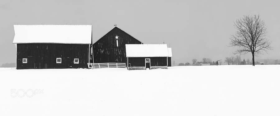 Winter barn landscape in Southern Ontario.