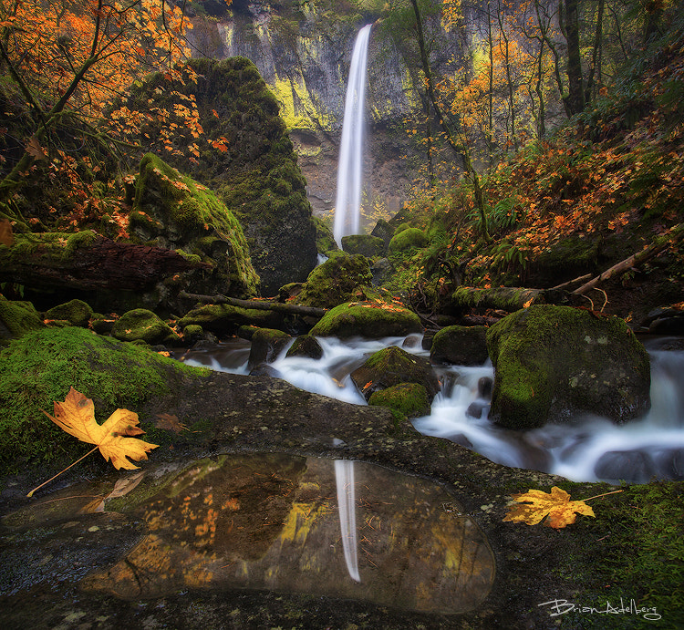 Photograph Reflection Falls. by Brian Adelberg on 500px