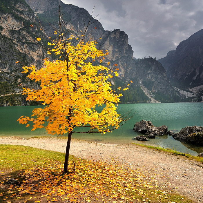 Photograph AUTUMN IN THE DOLOMITES by TOMÁŠ MORKES on 500px