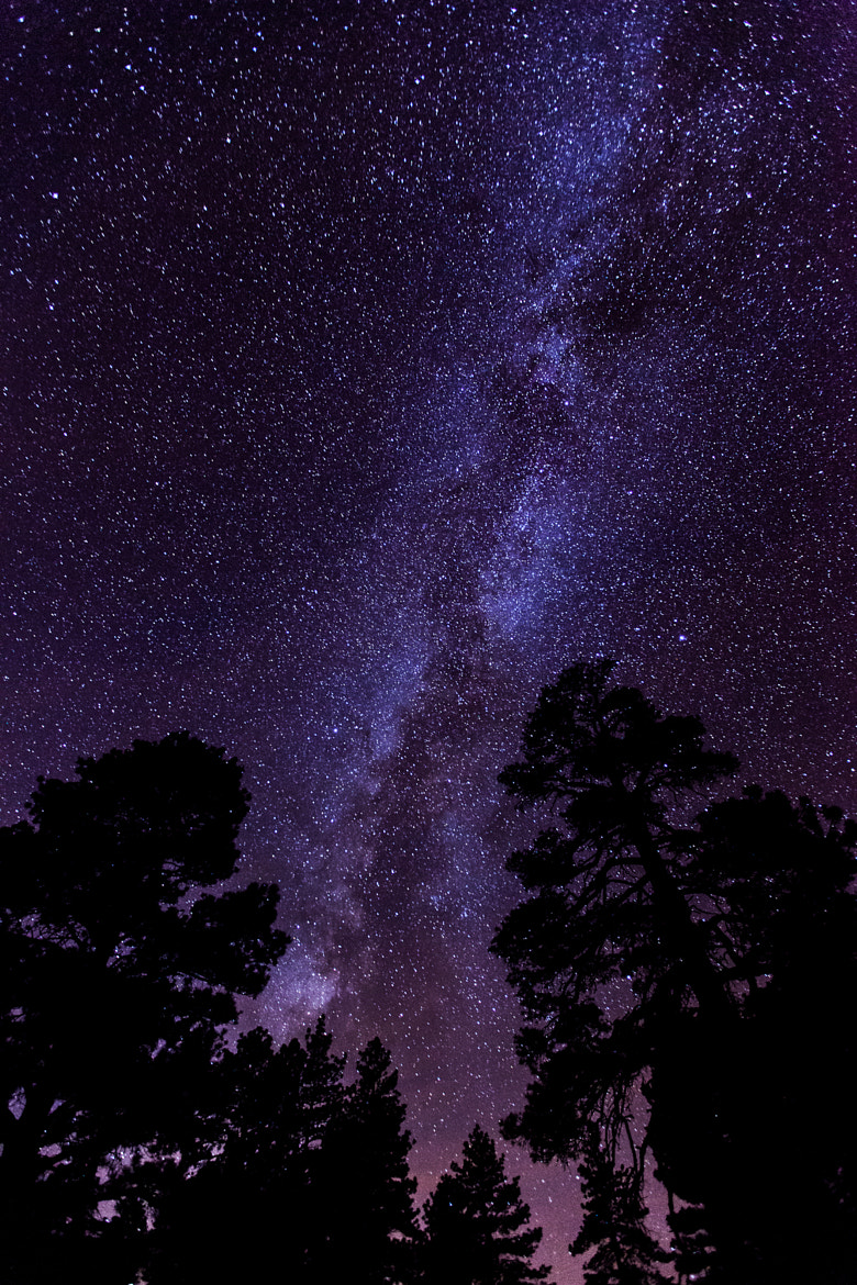 Photograph A River Through the Milky Way by William Dodd on 500px