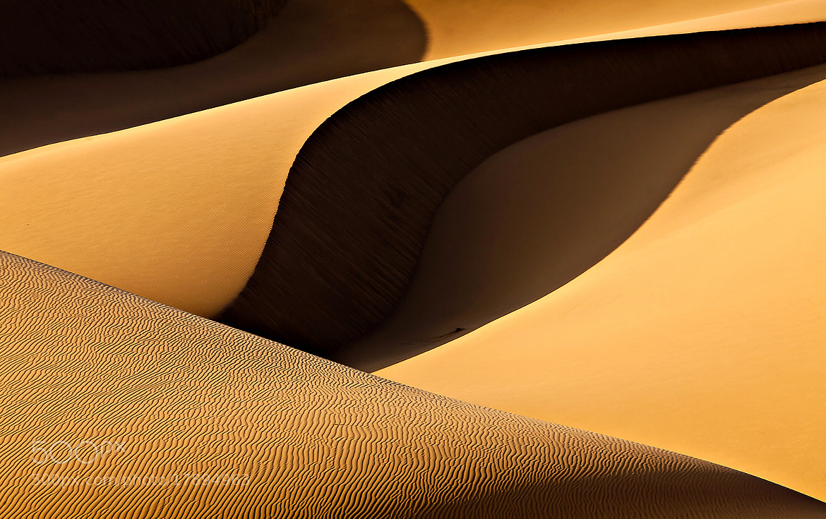 Photograph Shadow in the light by Mohammadreza Momeni on 500px