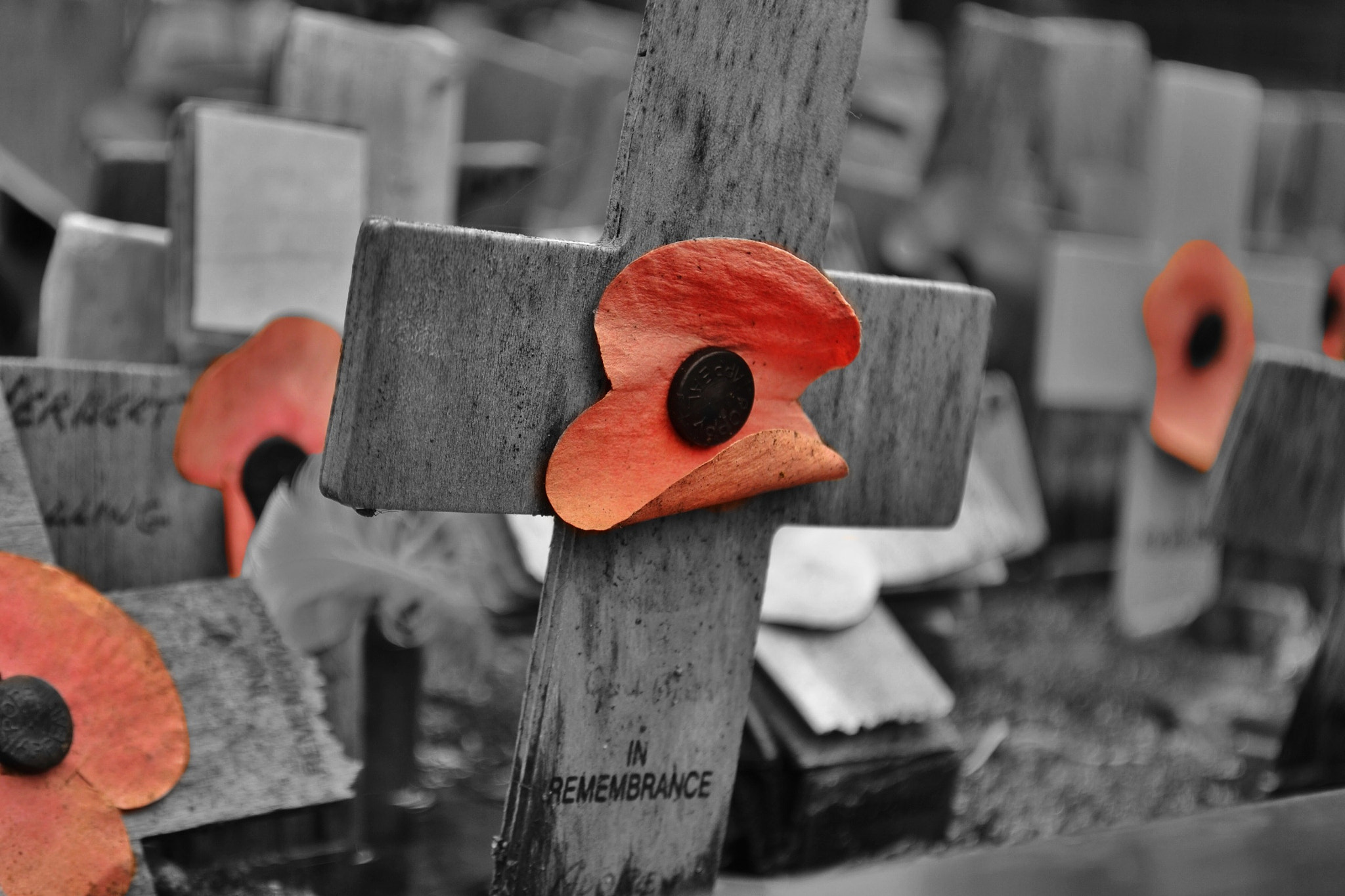 Photograph Lest we forget ... by Sarah johnson on 500px