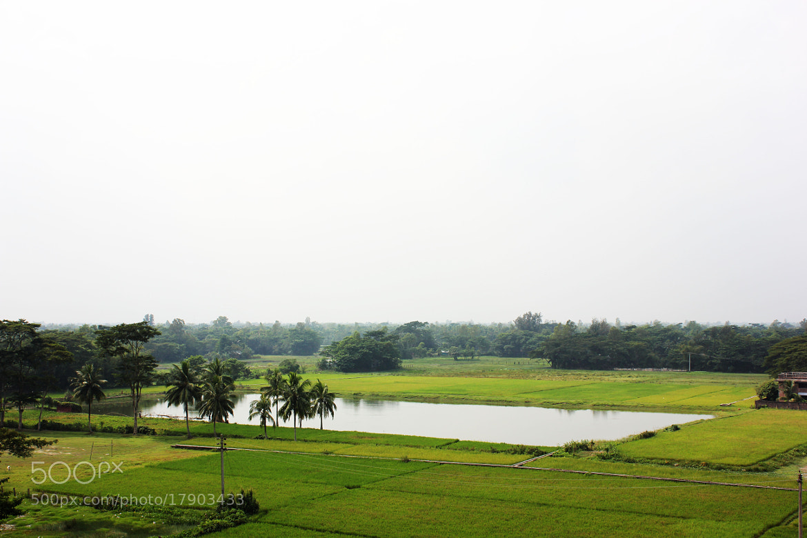 Photograph Tank by Morshad Alam on 500px