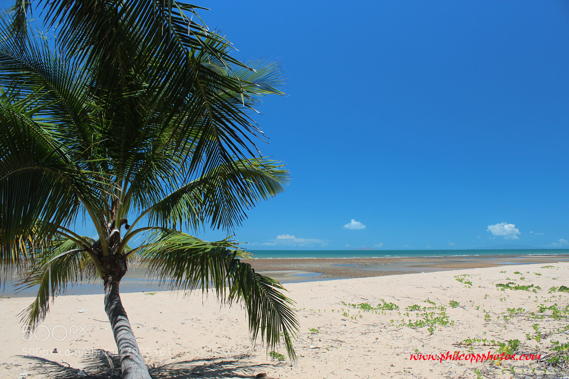 Photograph Tropical Beach by Phil Copp on 500px
