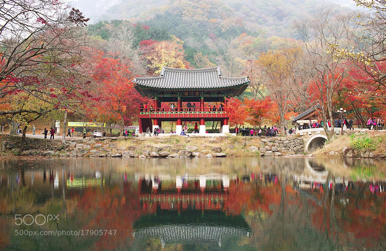 Photograph autumn color by Jonghyuk Kim on 500px