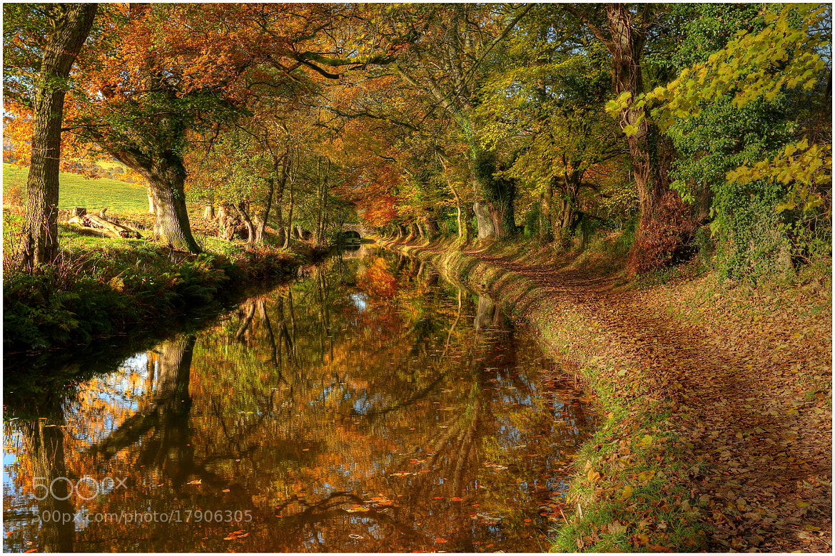Photograph Russet Reflections by Alan Coles on 500px
