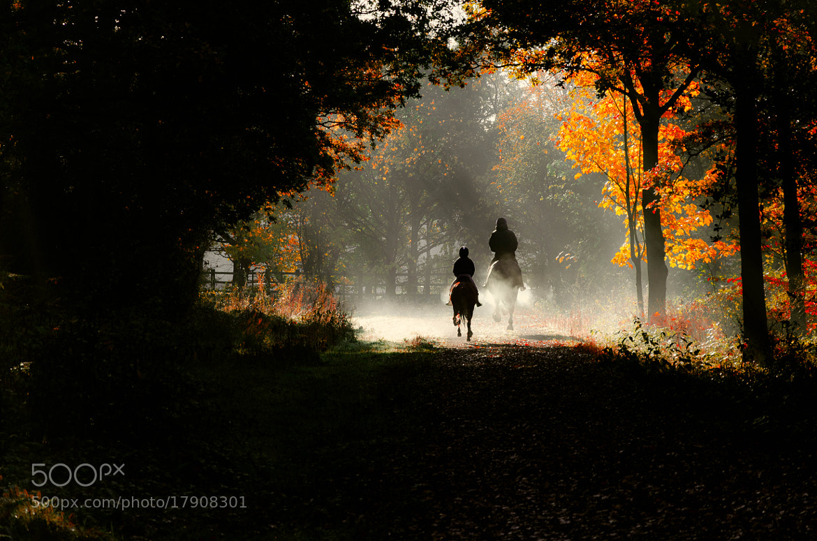Photograph Two Riders by Pawel Niktos on 500px