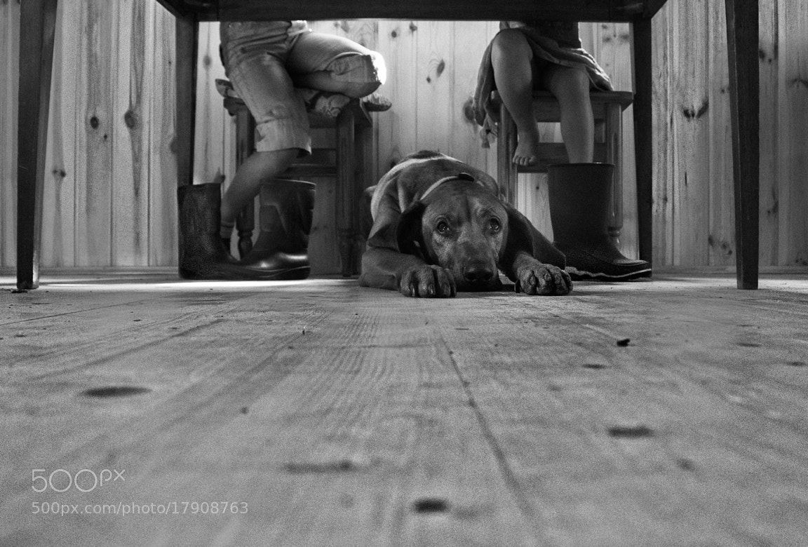 Photograph *** by Irina Ivanova on 500px