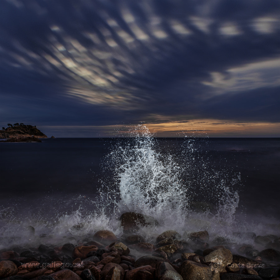 Photograph Costa Brava, live nature 4 by Jordi Gallego on 500px