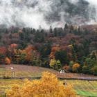 Autumn in Ollon